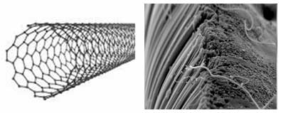 appearance of carbon nanotubes