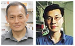 W. Ho and H. Lee studied chemical engineering connection Fe(CO)2